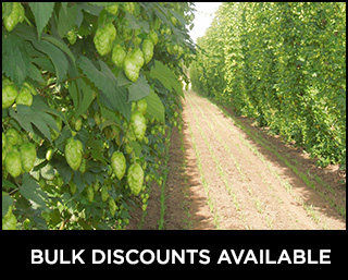 Commercial Hop Growers